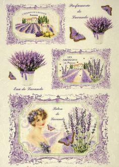 Big Flowers, Vintage Flowers, Owl Clip Art, Decoupage Printables, Victorian Wallpaper, Event Poster Design, Ancient Egyptian Art, Lavander, Vintage Sheets
