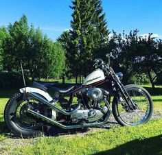 Choppers, Sportster Chopper, Bizarre, Motorcycle, Horses, Bobbers, Vehicles, Motorcycles, Motorbikes