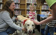 Therapy Dog Training: How To Get Your Dog Certified - Top Dog Tips