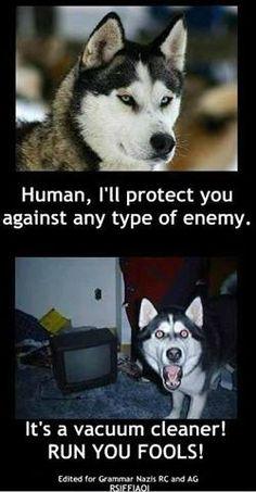So True!!!!  HAHAHAHA. A little TOO overprotective to me! lol