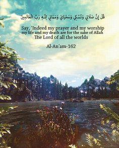 لله رب العالمين.. منتهى التسليم واليقين.. معاهدة بالصبر والرضا.. معرفة لحقيقة النفس والرحلة.