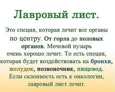 ЛАВРОВЫЙ ЛИСТ ЛЕЧИТ