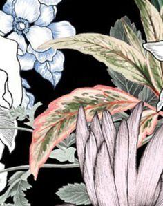 Textile Texture, Tropical Flowers, Paper Decorations, Rooster, Textiles, Patterns, Plants, Animals, Block Prints