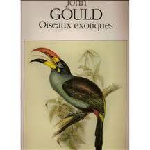 les oiseaux john gould - Recherche Google