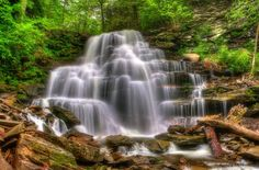 Erie Falls, Ricketts Glen State Park, PA. by Randy D. Dinkins