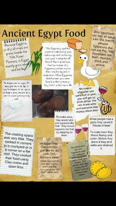 ancient egyptian food facts for kids printable - Yahoo Image Search Results Ancient Egypt Lessons, Ancient Egypt Activities, Ancient Egypt For Kids, Ancient History, European History, Ancient Aliens, Ancient Greece, American History, Ancient Egypt Crafts