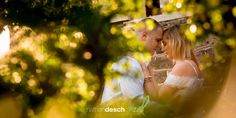 Engagement Pictures at Fort Hunter Park in Harrisburg by Award Winning Wedding Photography Studio Nathan Desch Photography. Rustic Engagement Photos, Engagement Pictures, Photography Ideas, Wedding Photography, Flower Girl Dresses, Wedding Dresses, Wedding Shot, Bride Gowns, Rustic Engagement Pictures