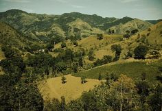 Cordillera Central (Puerto Rico) - Wikipedia, the free encyclopedia