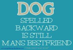 DOG spelled backward is still man's BESTFRIEND  #Quotes #Inspirational