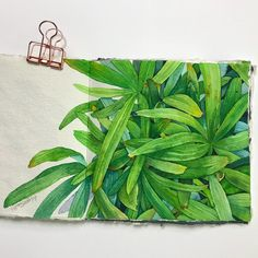 네 눈앞에 내 그림🌷 (@leegreeem) • Instagram photos and videos Watercolor Plants, Floral Watercolor, Watercolor Paintings, Watercolors, Gouache, Landscape Paintings, Coloring Books, Miniatures, Drawings