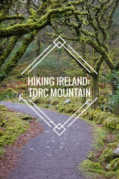 Torc Mountain in Killarney National Park: Hiking Ireland Scotland Travel, Ireland Travel, Galway Ireland, Cork Ireland, Travel Goals, Travel Tips, Travel Stuff, Budget Travel, Travel Ideas