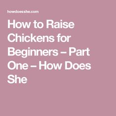 How to Raise Chickens for Beginners – Part One – How Does She