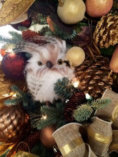 The owl is so adorable amongst the #ChristmasDecorations                                                                                                                                                     More