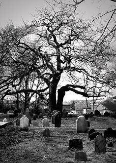 Cemetery in Salem, MA. This is where a lot of witches that we hanged during the witch trials are buried Cemetery Headstones, Old Cemeteries, Cemetery Art, Graveyards, Last Exile, Salem Mass, Terra Nova, Salem Witch Trials, Haunted Places
