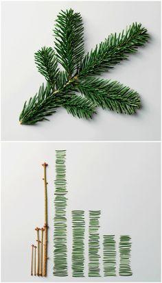 We Love Infographics / Pine Leaves byUrsus Wehrli — Designspiration
