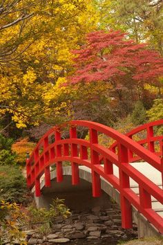 Japanese-style arched bridge, Duke Gardens, Durham, North Carolina. gardens.duke.edu