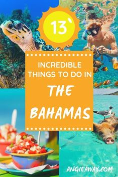 If I had to pick a favorite country in all my world travels, it might just be the Bahamas! I've visited dozens of times, and with 700 islands, I still haven't been to them all! It can be tough to choose which island to visit if you've never been, so check out this guide to things to do in The Bahamas. The best way to plan your next bucket list Caribbean trip is to explore what to do, where to stay, and and which island to visit! #Bahamas #Caribbean #Travel #Adventure #BucketList Us Travel Destinations, Amazing Destinations, Stuff To Do, Things To Do, Family World, Adventures Abroad, Bahamas Vacation, Ways To Travel, Travel Around The World