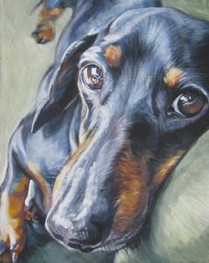 dachshund black and tan. LA Shepard (looks just like our Cooper! <3)