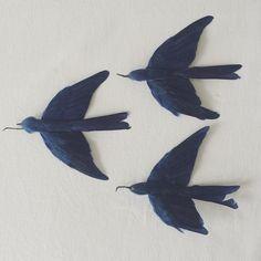 """今月の &Premium 連載テーマは、『羽根飾り』。帽子やドレスを彩る失われつつある美しき伝統工芸ですが、現存する羽根細工工房は、シャネルに買収された『ルマリエ』などごく僅かに。 ・ &Premium No.30 has issued. I wrote about """"plumasserie"""" (feather ornament) in my column. ・ 『L'oiseau bleu 青い鳥』と言えば、メーテルリンクの童話劇。チルチルとミチルの兄弟が、幻想世界で幸福の象徴青い鳥を探し歩くが、結局はわが家の鳥籠の中に見つけるという物語。  子供ながらに幸せって…と考えてしまう物語だった。  #lepetitjournaldebrocante"""