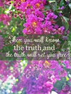 """""""And ye shall know the truth, and the truth shall make you free."""" John 8:32 KJV"""
