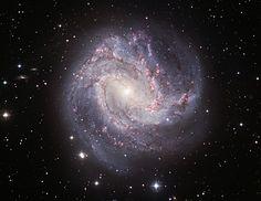 M83: The Thousand-Ruby Galaxy