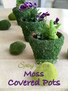 Moss covered decor is super hot right now. We wanted to add some spring beauty to our table with Moss Covered Pots but the selection out there has been either t…