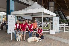 """Dogs Day 2016 - Progetto """"Confido"""" - Mondovicino Outlet Village - A.s.s.e.a onlus - Fondazione Vialli e Mauro per la ricerca e lo sport onlus - Centro Clinico Nemo Arenzano"""