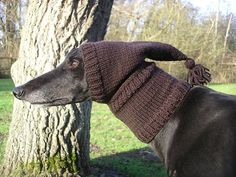 Greyhound/Galgo Pixie Hat by Crafting4Greyhounds on Etsy, £12.00