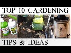 10 Tips for Savvy Gardeners - Garden Lovers Club