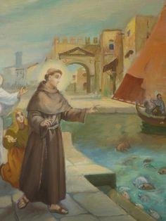 vorrei raccontarvi un fatterello, accaduto a Rimini nel lontano 1221......