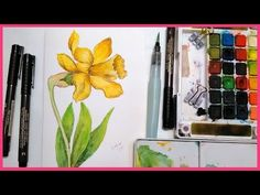 Daffodil Pen & Ink/Watercolor Tutorial REAL TIME for Beginners I will show you how to draw a daffodil in waterproof pen and then paint it with watercolors! Watercolor Video, Watercolor Projects, Watercolour Tutorials, Watercolor Print, Watercolor And Ink, Watercolor Flowers, Watercolor Paintings, Paint Flowers, Watercolor Techniques