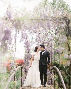 Elaine - The White Carpet - Bridal