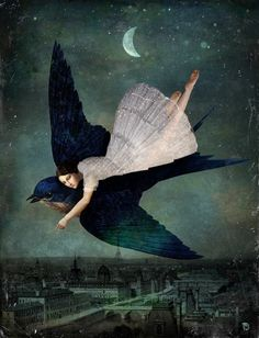 Fly me to Paris. Christian Schloe.