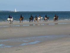 Paardrijden op het strand op Vlieland