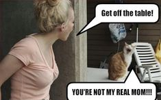 lol my cats all the time