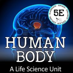 This complete unit is a collection of my HUMAN BODY resources found in my LIFE SCIENCE CURRICULUM - THE COMPLETE COURSE ~ 5E MODEL and is now being offered as an individual unit for purchase.