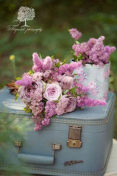 Ana Rosa ♡.. .~*~.❃∘❃✤ॐ ♥..⭐.. ▾ ๑♡ஜ ℓv ஜ ᘡlvᘡ༺✿ ☾♡·✳︎· ♥ ♫ La-la-la Bonne vie ♪ ❥•*`*•❥ ♥❀ ♢❃∘❃♦ ♡ ❊ ** Have a Nice Day! ** ❊ ღ‿ ❀♥❃∘❃ ~ FR 1st JAN 2016!!! .. .~*~.❃∘❃✤ॐ ♥..⭐..༺✿ ♡