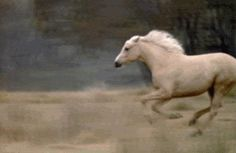 Willowtail raced down the battle field to save Araglas, knowing what Estella just did, She stopped and leaned her head down the little child, he grabbed her neck and she raced with him far away from the attack.