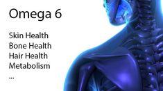 5 Công Dụng Của Omega 3 6 9 Đối Với Sức Khỏe Và Đời Sống Con Người Bone Health, Hair Health, Omega 3 6, Plexus Products, Metabolism, Healthy Hair