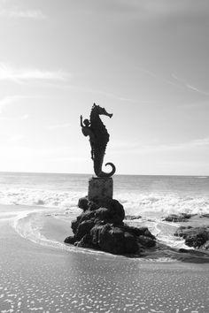 """N.... La escultura del Caballito de Mar en la playa """"Los Muertos"""". Puerto Vallarta, México."""