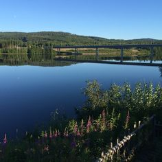My favorite place in the summer. By the Glomma, Kongsvinger, Norway