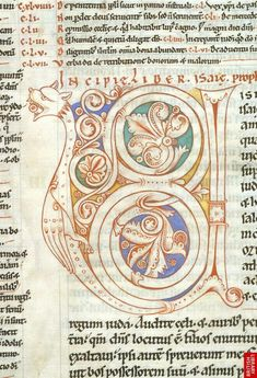 A zoomorphic initial found in London, British Library, MS Harley 2798, f. 151r.