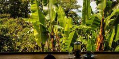 Ausblick vom Up the Hill Cafe auf Bastimentos © Isabella Falter #Mittelamerika
