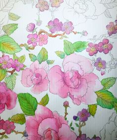 31 Best Watercolor Coloring Books for Adults images | Watercolour ...
