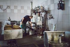 Ein Hoch auf die Tradition! Seit dem Jahre 1897 widmen wir uns der Produktion von kaltgepressten Ölen. Es ist ein Handwerk und basiert auf einer altbewährten Herstellungsmethode. Unsere Öle werden nach wie vor in kleinen Chargen behutsam mittels Stempelpresse ohne zusätzliche Hitzeeinwirkung oder Reibungswärme gepresst. So kann aus den Saaten die hochwertigste Ölqualität gewonnen werden! Graz, Craft Work