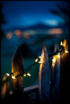 Country Fence lights