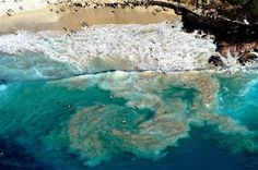 Big Island, Hawaii ~ An aerial view of La'aloa Beach Park or Magic Sands beach in Kailua-Kona, Hawaii. The beach is called Magic Sands because when rough surf hits, all of the sand is emptied off the beach and temporarily moved out to sea. Need A Vacation, Hawaii Vacation, Hawaii Travel, Dream Vacations, Vacation Spots, Kona Hawaii, Kailua Kona, Magic Sand, Ocean City Md