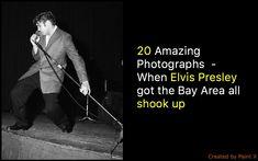 Photos: Bob Campbell, The Chronicle Photo: Bob Campbell, The Chronicle Young Priscilla Presley, King Creole, Elvis Presley Photos, Ann Margret, Ever And Ever, Left Alone, Auditorium, Bay Area, Celebrity Photos