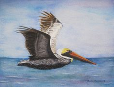 #Pelican #Art #Beach #Bird #Watercolor #Painting #Ocean #Seashore #Wildlife #Vacation #Home #Decor #Gift. Who hasn't marveled at a pelican gliding over the waves and suddenly taking a perfectly vertical nosedive to score a tasty meal? Enjoy this fine art reproduction of my original watercolor painting in your beach house or as a memory of a wonderful tropical vacation. © 2012 by Barbara Rosenzweig, matted art print 16x20 $48.00 Free Shipping US - other sizes available Etsy.