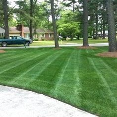 How to Get a Lush, Green Lawn Your Neighbors Will Envy - A lush green lawn like this is possible, if you properly mow, fertilize and weed your grass throughout the season. Source by james_kozak - Front Yard Landscaping, Backyard Landscaping, Hydrangea Landscaping, Landscaping Design, Landscaping Software, Home Design, Modern Design, Reseeding Lawn, Lawn Striping